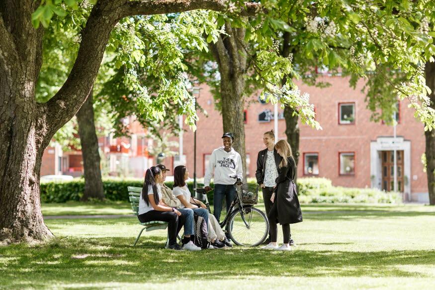 Ungdomar hänger i stadsparken.