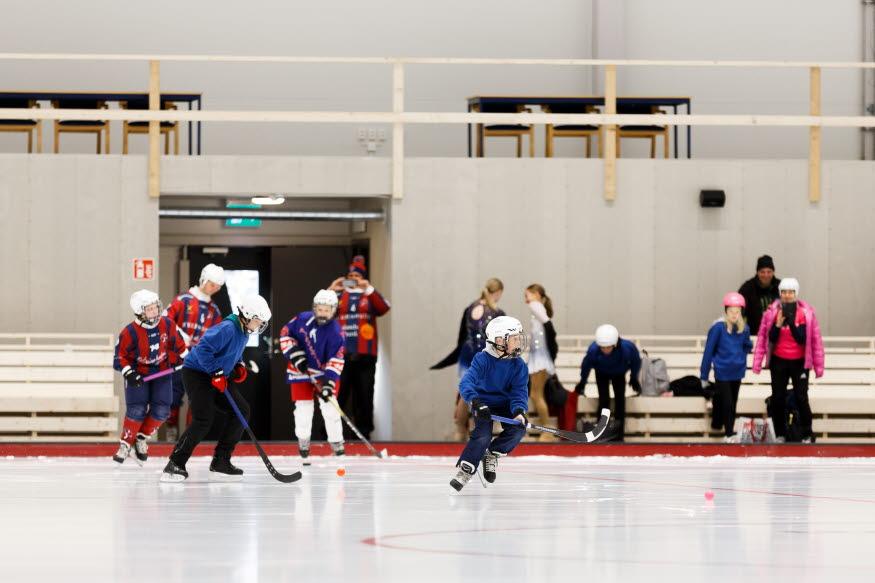 skridskoåkare, ishockeyspelare, allmänhetens åkning inne i isarenan